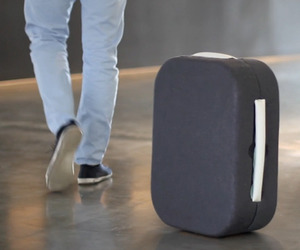 The Hop Following Suitcase Follows You All On Its Own