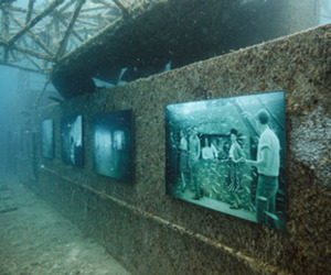 'The Vandenberg Life Below the Surface,' Exhibition