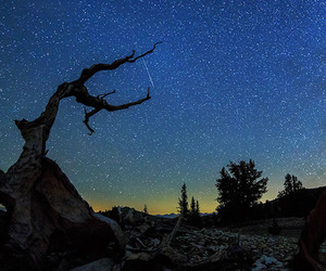 Timelapse Filmed During Meteor Shower in California