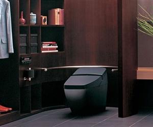 Transformative Toilets