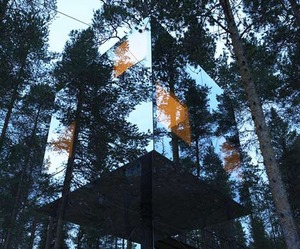 Tree Hotel gives you a 360 degree view