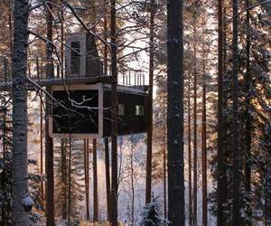 Tree Hotel in Harads - Sweden