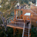 Tree House by Safdie Rabines Architects