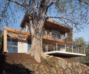Tree House in California by Standard