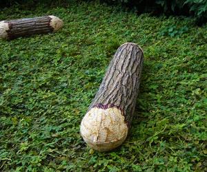 Tree Log Pillows