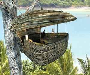 Tree Pod Dining in Thailand