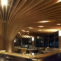 TREE Restaurant in Sydney | Koichi Takada Architects