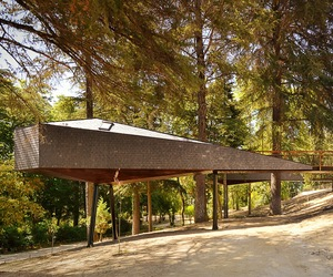 Tree Snake Houses at Pedras Salgadas Park