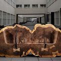 Tree Trunk Benches Gives Homage to the Elm trees