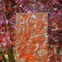 Tyler Fenn Garden Texture