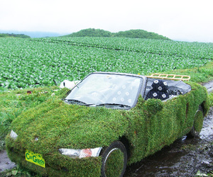 Ultimate Eco Fashion!: Lawned Cars and more...