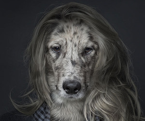 """Underdogs"" Series by Sebastian Magnani"