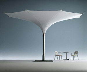 Unique Parasol Umbrellas – Tulip Parasols from MDT