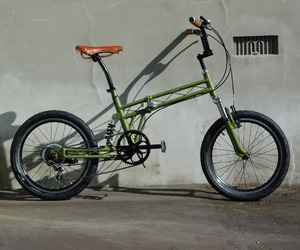 Vanguard Salamander Bike