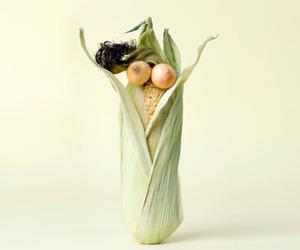 Vegetable Art by Carl Kleiner