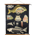 Vintage Jung Koch Quintell German Science Fish Poster