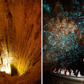 Waitomo Cave in New Zealand Glows
