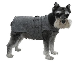 Wall Street Dog Trench Coat