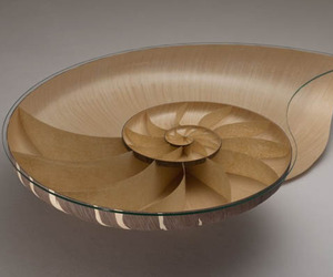 Nautilus II Table: Walnut And Sycamore Veneer