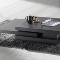 Wenge Contemporary Coffee Table