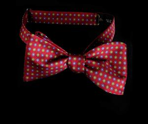 'William' - Silk Twill Bow Tie