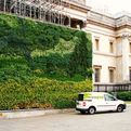 World's First Living Wall Painting