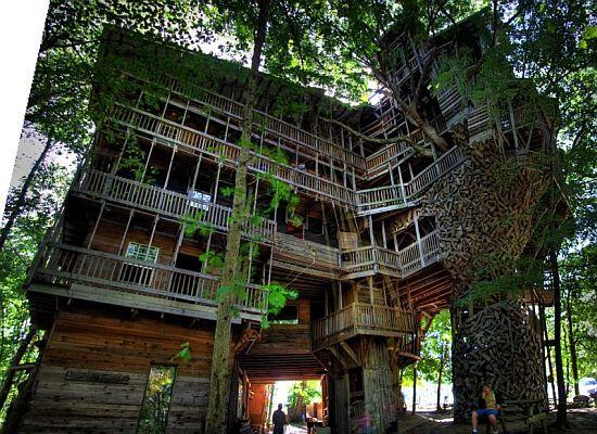 Tree House Jakarta World's Tallest Tree House is