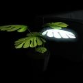 Plamp is a lamp that looks like a plant